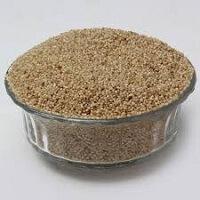 Little Millet