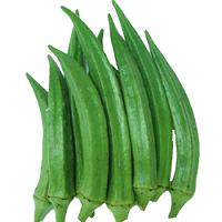 Ladies Finger Vendakkai - Buy Vendakkai / Ladies Finger Online Vegetables Shopping at anandha grocery Coimbatore